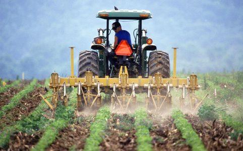 Teknologi Pertanian Andalan Di Indonesia